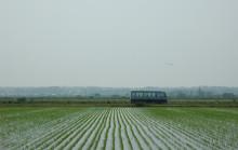 蔵元駄文-バス3