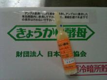 蔵元駄文-アンプル