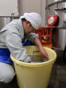 蔵元駄文-米洗い中