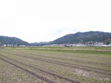 蔵元駄文-秋鹿  2
